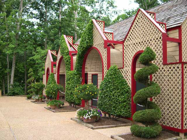 Busch Gardens Williamsburg, June 2004